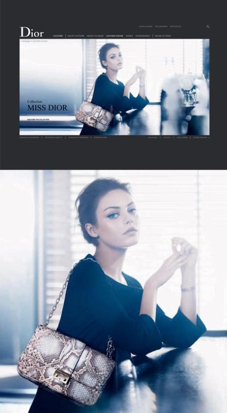Miss Dior leather goods 2012, miss dior leather goods retoque photoshop, dior retoque photoshop, katanga73, katanga73.wordpress.com, katarama